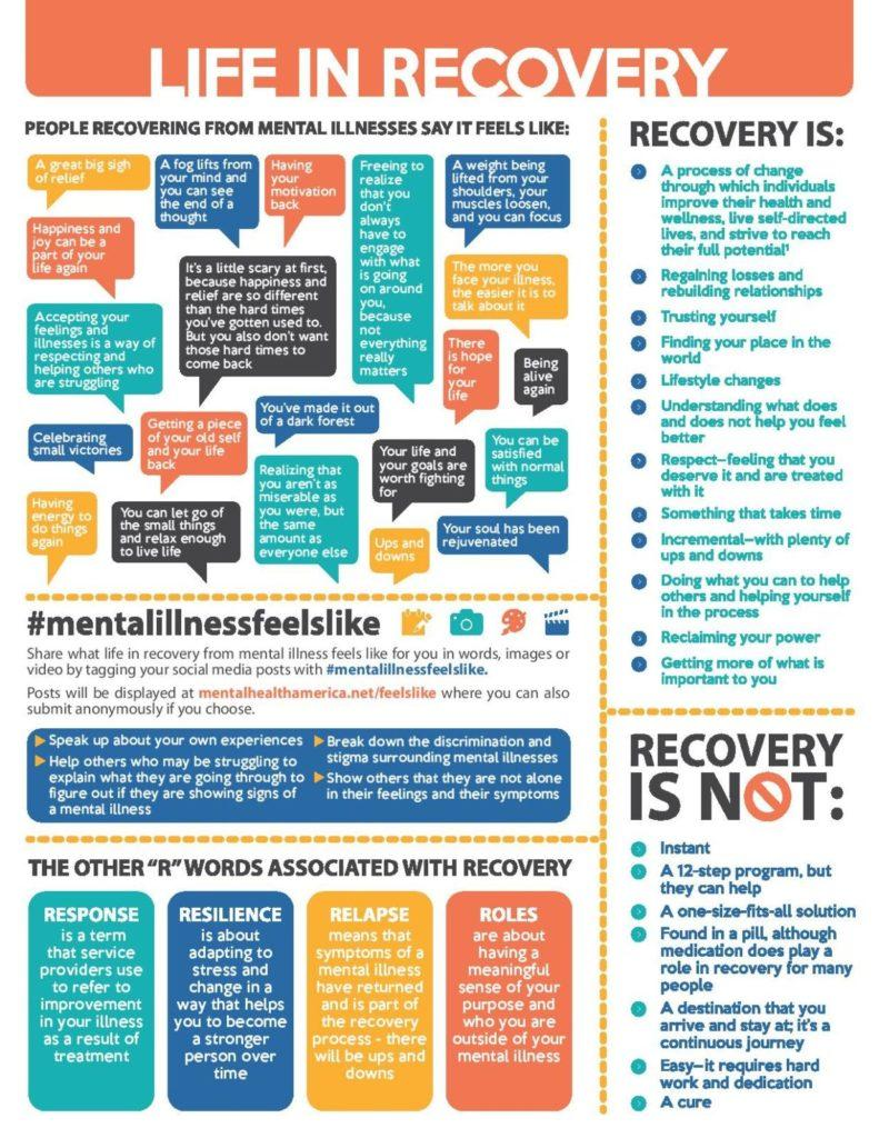 Life in Recovery Fact Sheet-page-001